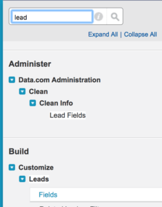 Salesforce Lead fields search screenshot