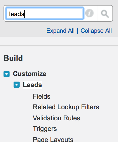 Search for Leads in Salesforce